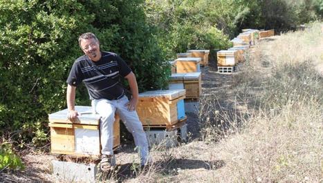«Sans apiculteurs, il n'y a plus d'abeilles» - LaDépêche.fr | Abeilles, intoxications et informations | Scoop.it