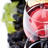 Le Vin et + encore