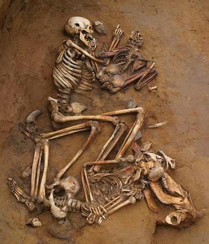 800 Years Of Human Sacrifice In Kent | Archaeology | Scoop.it