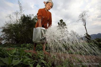 Water in a changing climate: can we do more with less? | CGIAR Climate | A Better Food System | Scoop.it