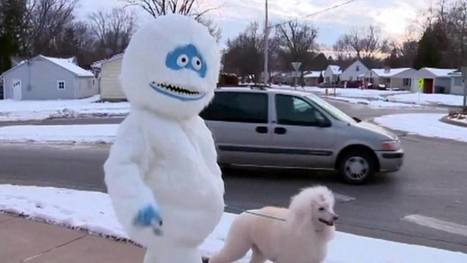Woman walks her dog while dressed as the abominable snowman, makes winter less awful | Good Management | Scoop.it