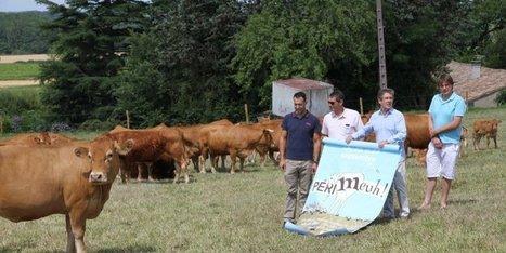 Périgueux : une ferme géante, et moderne | Agriculture en Dordogne | Scoop.it