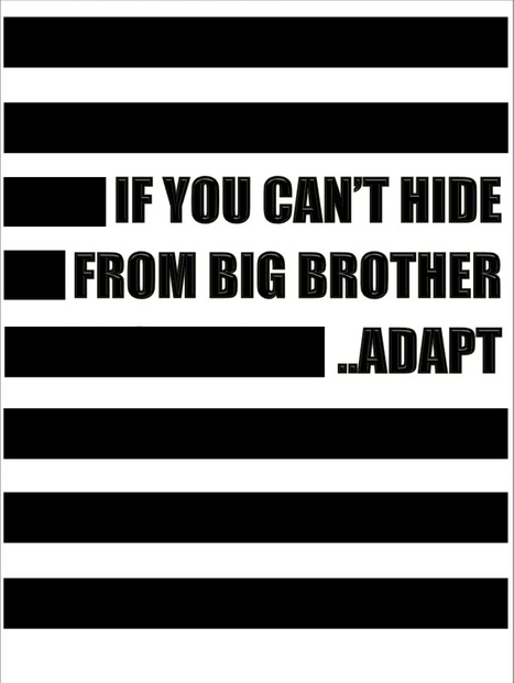 If You Can't Hide From Big Brother, Adapt | The Transparent Society | Scoop.it