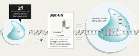 Nature: Three technologies that changed genetics | Science Tools | Scoop.it