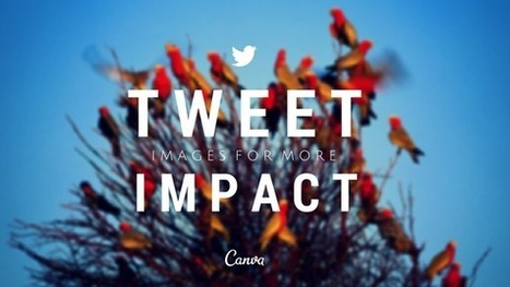 Tweet Images for More Impact on Twitter   Twitter News & Tools   Scoop.it