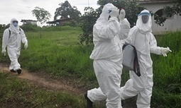 Two new Ebola cases in Liberia, seven weeks after country declared virus-free | Virology News | Scoop.it