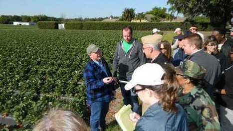 Three Congressional Priorities For Potato Growers - Growing Produce | Potato | Scoop.it