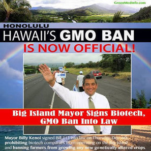 The big island 'Hawaii' signs bill 113, prohibiting biotech companies to plant new GMO crops | Local Food Systems | Scoop.it