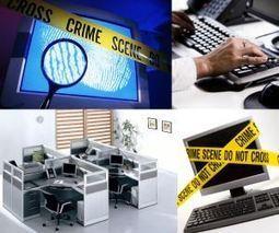 Aumentan estafas y delitos por compras en Internet durante época navideña | Ciberseguridad + Inteligencia | Scoop.it