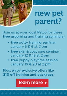 Dog Grooming - Pet Grooming and Cat Grooming Available Online from Petco.com | Dog Grooming Boca Raton | Scoop.it