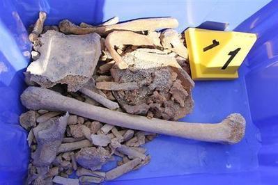 Fouesnant (29). Les ossements découverts aux Glénan ont 900 ans | Rhit Genealogie | Scoop.it