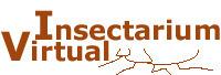 (ES) (PT) - Diccionario Etnoentomológico | entomologia.net | Glossarissimo! | Scoop.it