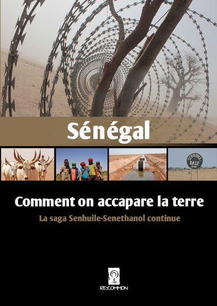 Au Sénégal, l'accaparement des terres est sur le point d'imploser | Questions de développement ... | Scoop.it