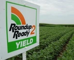 Le pesticide Roundup responsable de l'augmentation de l'intolérance au gluten ? | Toxique, soyons vigilant ! | Scoop.it