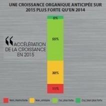 Vers une hausse de 2,9% des ventes de logiciels en France en 2015 - Le Monde Informatique | Toute l'actualité de PAC | Scoop.it