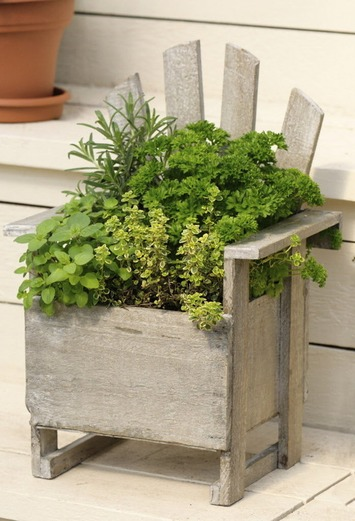 35 Herb Container Gardens ~ Pots & Planters {Saturday Inspiration & Ideas} - bystephanielynn   Container Gardening   Scoop.it
