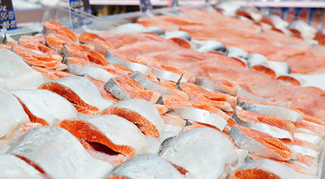 More Big Retailers Say 'No' to GMO Salmon | Nutrition Today | Scoop.it