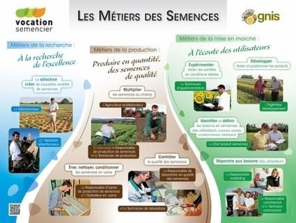 Vocation Semencier: téléchargez les fiches métiers! | Infos CDI | Scoop.it