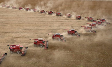 Brazil faces drop in crops | Food Situation - globally | Scoop.it