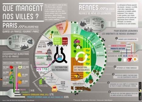 #EconomieRéelle : Lorsque des villes organisent l'autosuffisance alimentaire | Economies alternatives ..... | Scoop.it