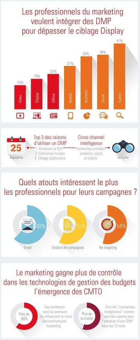 #Infographie de @frenchweb : le DMP au service du marketing | Social media & health - Médias sociaux & santé | Scoop.it