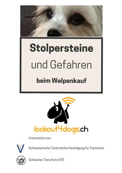 Checkliste für den Welpenkauf | ʕ·͡ᴥ·ʔ Welpenkauf Informationen | Scoop.it