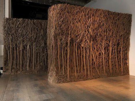 Eva Jospin: Forests | Art Installations, Sculpture, Contemporary Art | Scoop.it