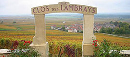 Vin : LVMH reprend le Clos des Lambrays | Le vin quotidien | Scoop.it