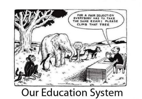 Our Education System | Sustainable Development in India | Scoop.it
