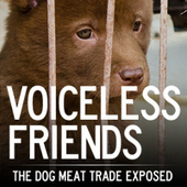 The cruel dog meat trade exposed   Animal Equality Undercover Investigation   Nature Animals humankind   Scoop.it