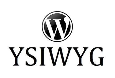 WordPress Tutorial For Beginners: Using The Visual Editor | Prionomy | Scoop.it