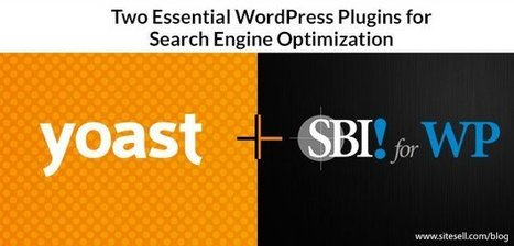 Two Essential WordPress Plugins for Search Engine Optimization - The SiteSell Blog | The Content Marketing Hat | Scoop.it
