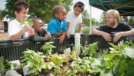 How to start a school garden | Environmental policy | Scoop.it