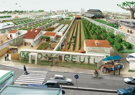 Montreuil Environnement: 5 piliers pour un projet agri-urbain dans les Murs à Pêches | Économie circulaire locale et résiliente pour nourrir la ville | Scoop.it