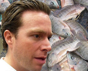 Mexico - Chiapas aims to produce 60pc of Mexican tilapia | Aquaculture | Scoop.it