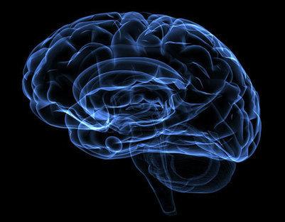 Gimnasia para el cerebro contra la ansiedad - Vanguardia | Psiconeuroinmunología | Scoop.it