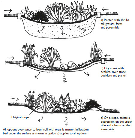 Rain Gardens: Improve Stormwater Management in Your Yard | CMHC (Canada) | A Gathering of Rain Gardens | Scoop.it