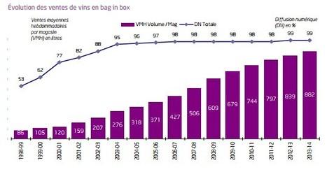 Francia: Significative le vendite di vino in Bag in Box | Vino e dintorni: a proposito di vini, bottiglie, tappi, etichette, bicchieri, il vino in cucina e... | Scoop.it