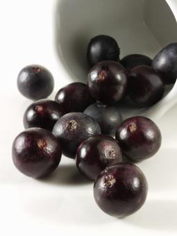 Acai Berry - το Θαύμα της φύσης   ΥΠΕΡΤΡΟΦΕΣ & ΒΟΤΑΝΑ   Scoop.it