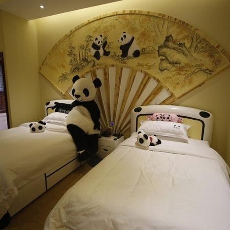 World's first panda-themed hotel | Wonderfull Hotel | Scoop.it
