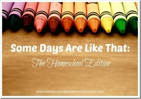 Some Days Are Like That: The Homeschool Edition - Weird Unsocialized Homeschoolers