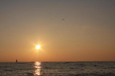 2016IMG_2641   ❀ hawaiibuzz ❀   Scoop.it
