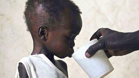 Welthungerbericht 2015: 800 Millionen Menschen leiden Hunger   Agrarforschung   Scoop.it