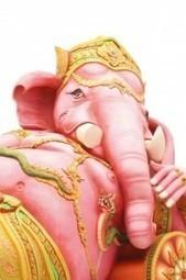 Mémoire : comment faire pleurer un éléphant en 5 secondes | changergagner | Scoop.it