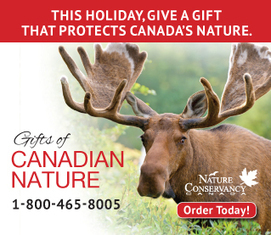 NCC: Nature Conservancy of Canada | Canadian Wild Life Conservation | Scoop.it