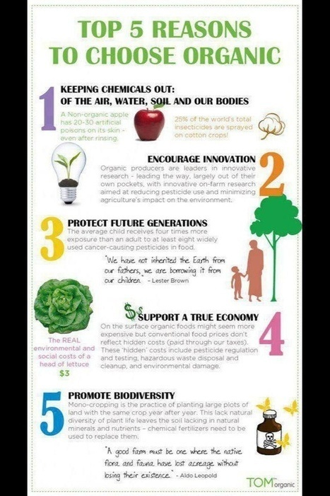 Eating Organic on a Budget - Gardener Community & Homesteading   Environment & Ecology   Scoop.it