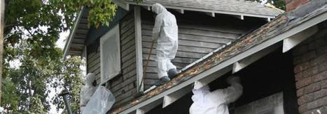 Asbestos Removal Company | Maddison Swanton | Scoop.it