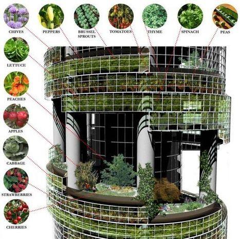 Top 5 Vertical Farming Ideas - Solar Feeds | Vertical Farm - Food Factory | Scoop.it
