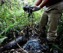 Chevron in US court to block $19bn Ecuador fine | Sustain Our Earth | Scoop.it