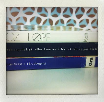 Leselyst: Bokryggpoesi #11   Skolebibliotek   Scoop.it